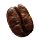 coffee-beans-P4MXYZD5-1.png