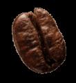 coffee-beans-P4MXYZD5@2x-1.png