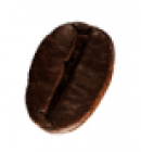 coffee-beans-P4MXYZD6-1.png