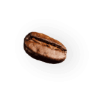 coffee-beans-P4MXYZD7.png