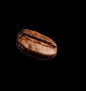 coffee-beans-P4MXYZD7@2x-1.png
