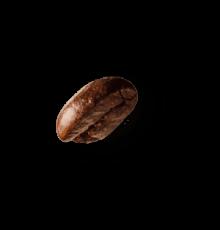 coffee-beans-P4MXYZD@2x-1.png